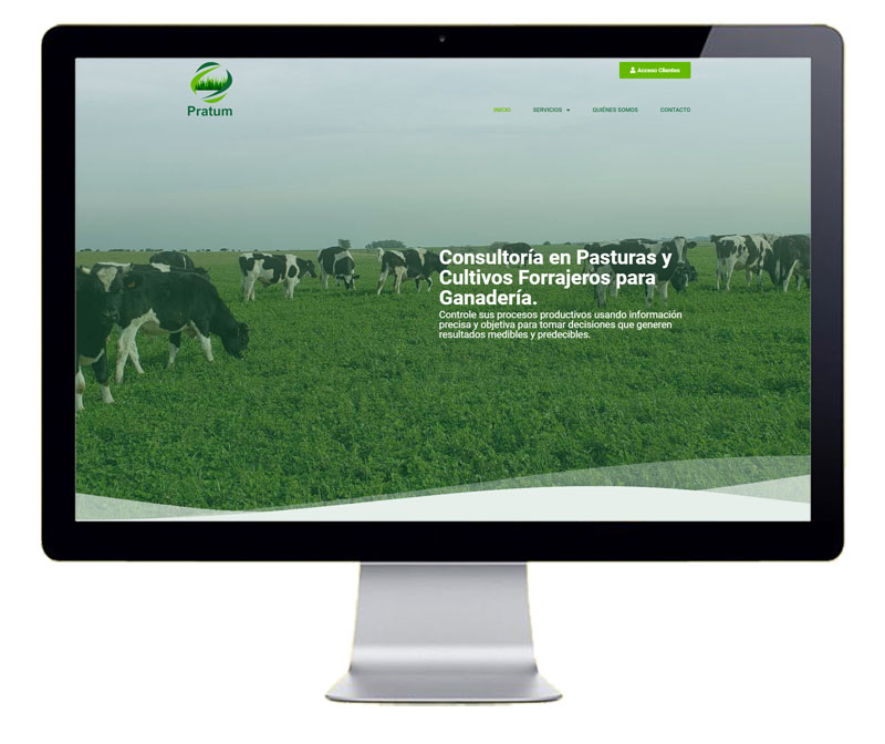 Diseño de pagina web para Pratum