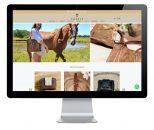 Diseño tienda online para Chabas